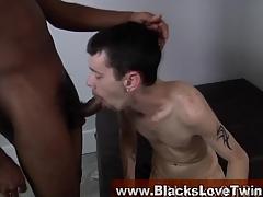 Whitey drawing black cock