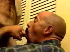Onerous Daddy Bears Blowjob
