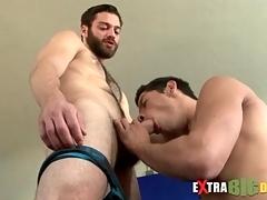 Bearded bear gets a big cock blowjob